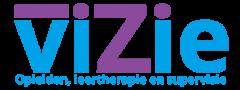 viZie 2021 - Logo
